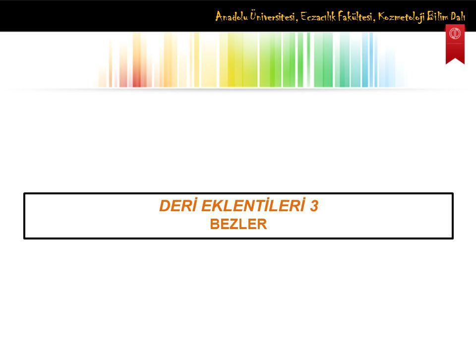 DERİ EKLENTİLERİ 3 BEZLER