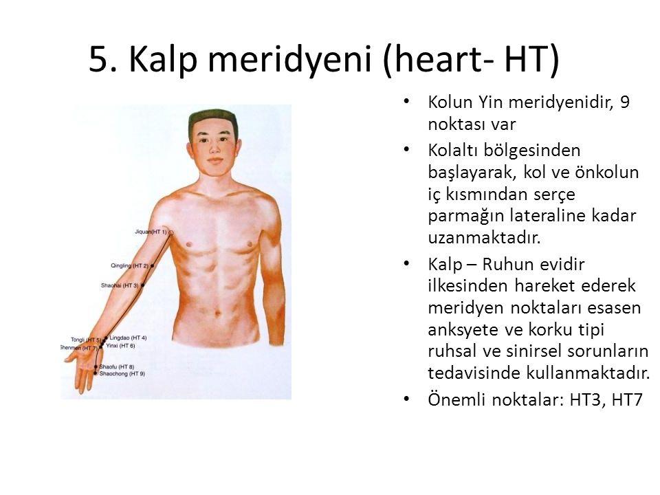 5. Kalp meridyeni (heart- HT)