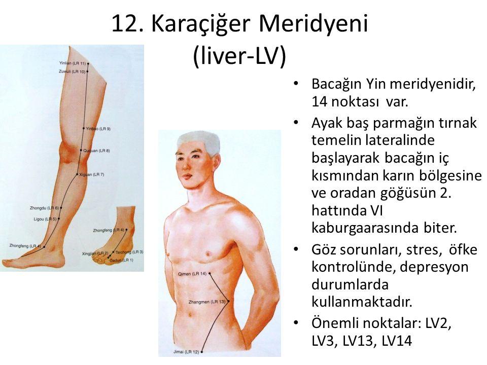 12. Karaçiğer Meridyeni (liver-LV)