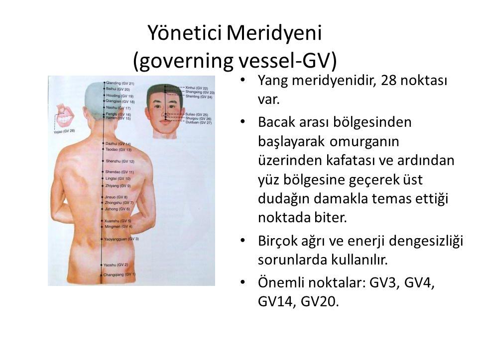 Yönetici Meridyeni (governing vessel-GV)