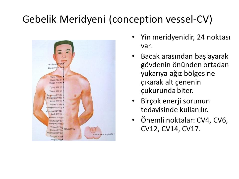 Gebelik Meridyeni (conception vessel-CV)