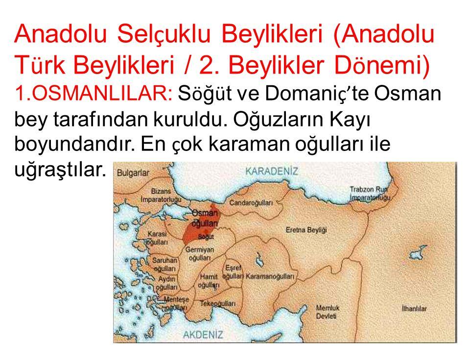 Anadolu Selçuklu Beylikleri (Anadolu Türk Beylikleri / 2