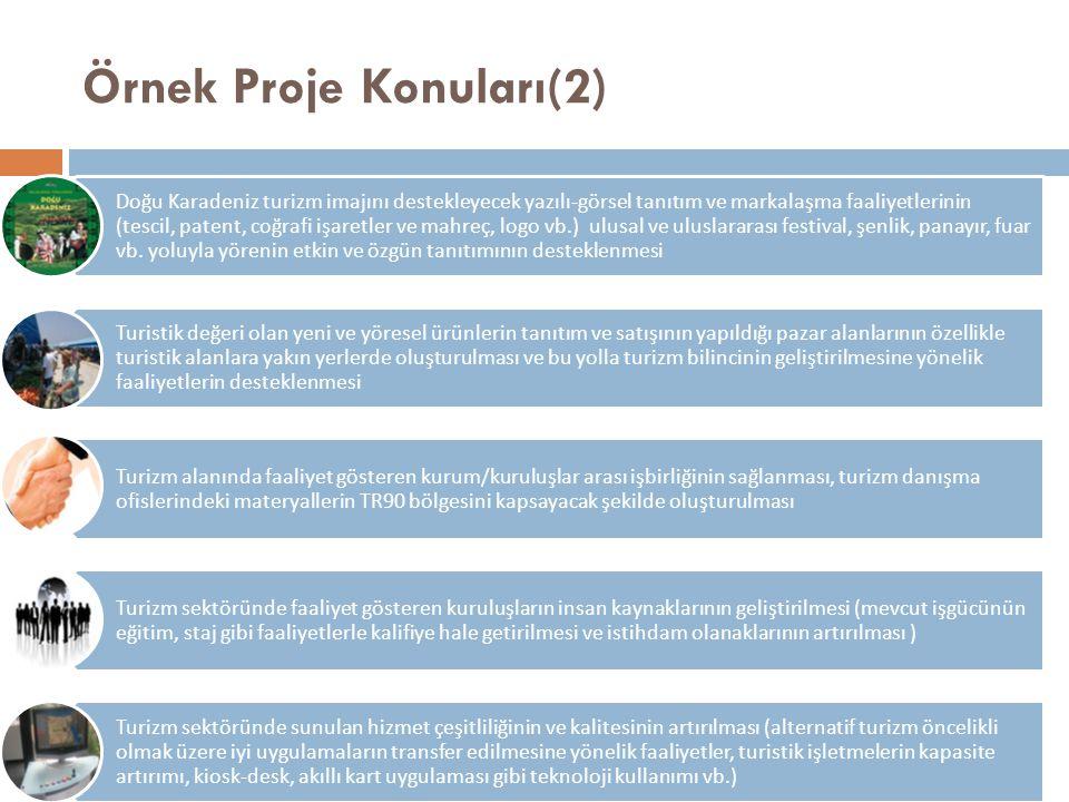 Örnek Proje Konuları(2)