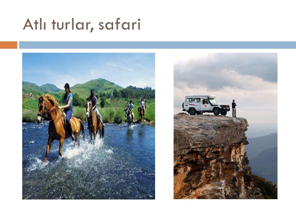 Atlı turlar, safari