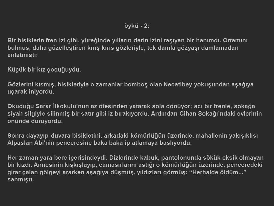 öykü - 2: