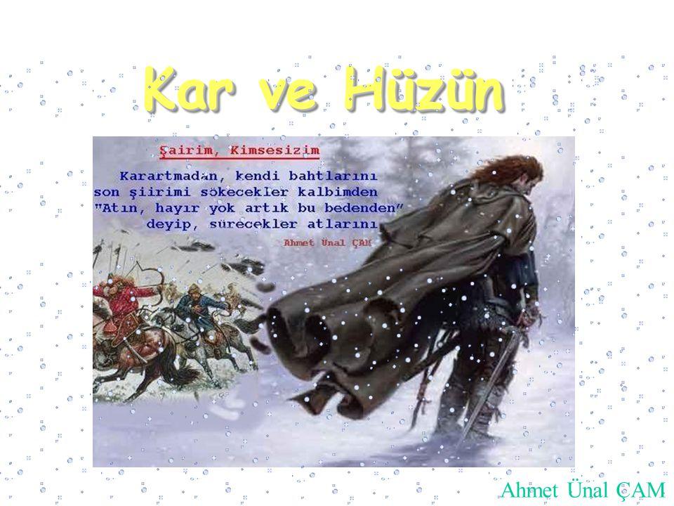 Kar ve Hüzün Ahmet Ünal ÇAM