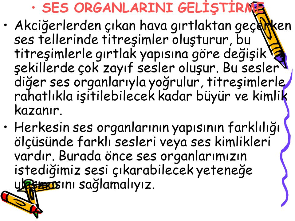 SES ORGANLARINI GELİŞTİRME
