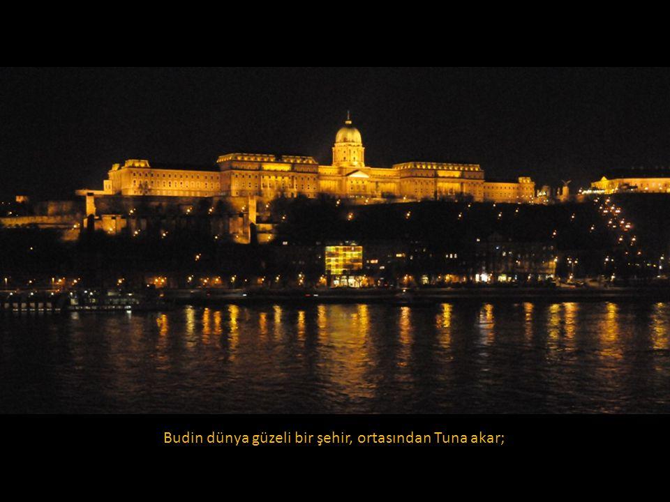 Budin dünya güzeli bir şehir, ortasından Tuna akar;
