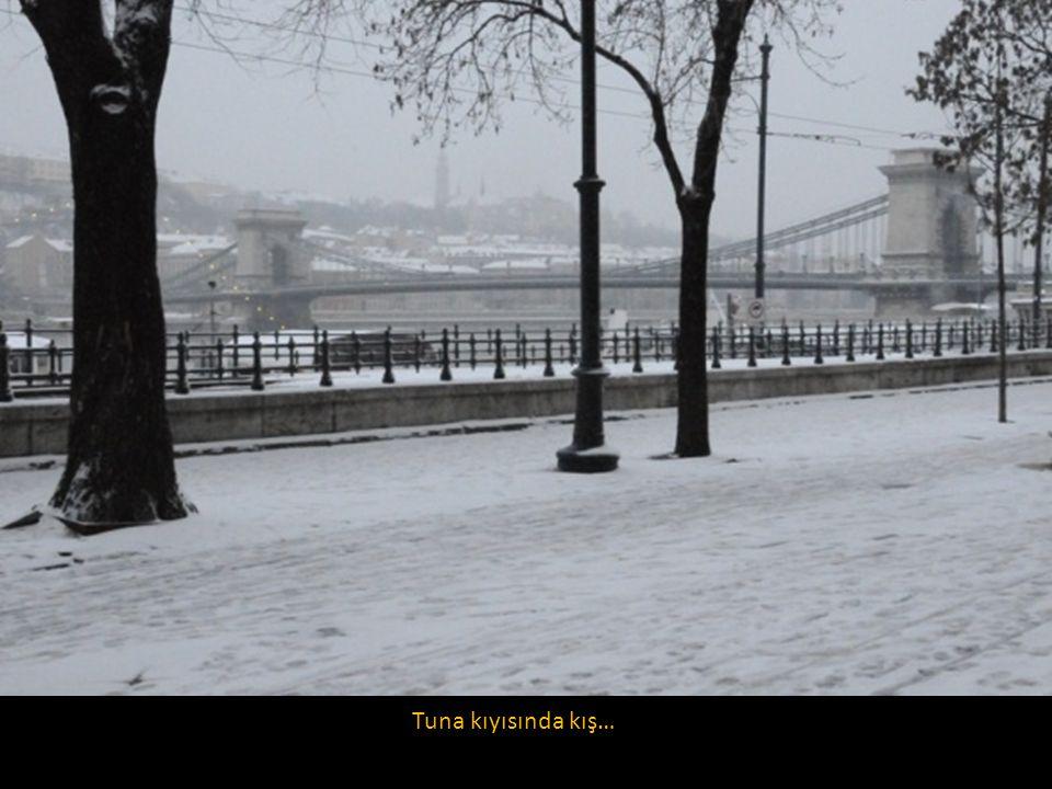 Tuna kıyısında kış…