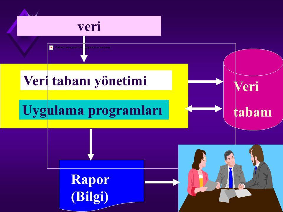 veri Veri tabanı yönetimi Veri tabanı Uygulama programları Rapor (Bilgi)