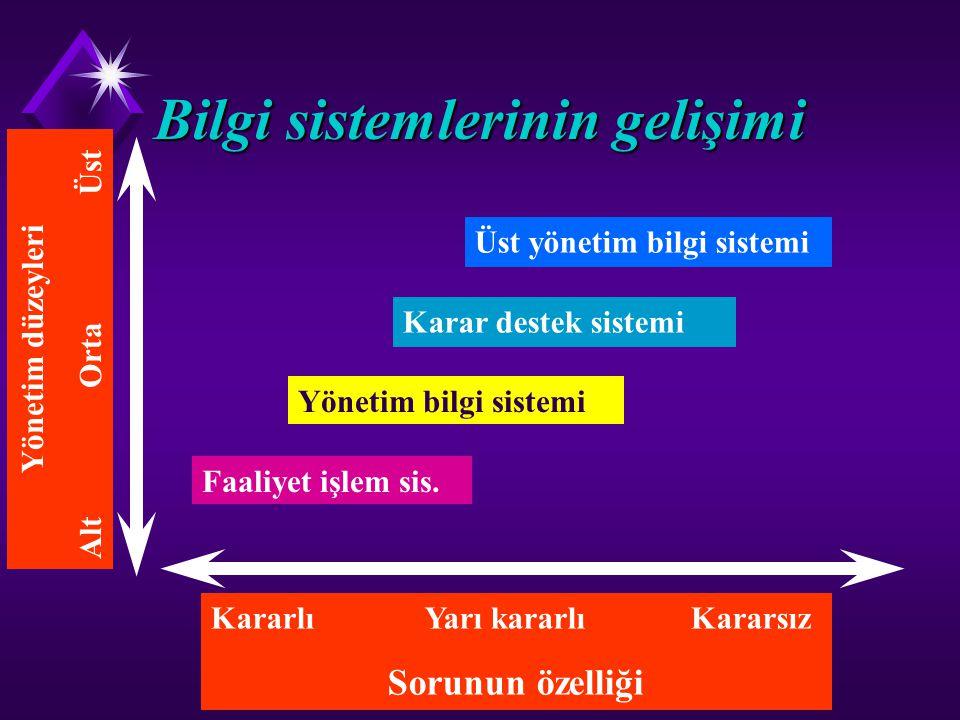 Bilgi sistemlerinin gelişimi