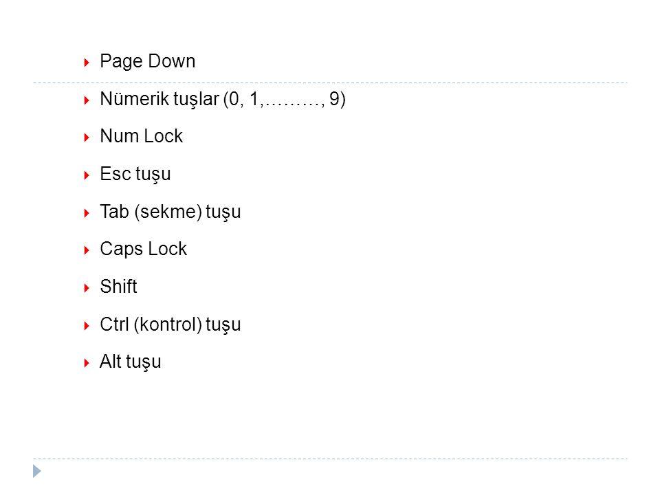 Page Down Nümerik tuşlar (0, 1,………, 9) Num Lock. Esc tuşu. Tab (sekme) tuşu. Caps Lock. Shift.