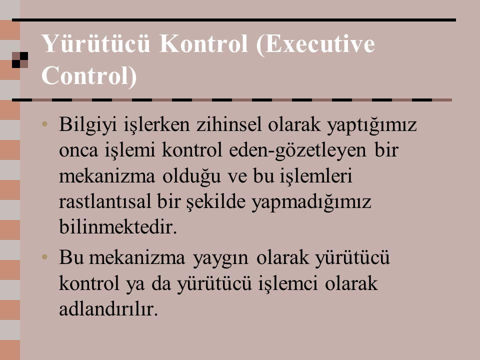 Yürütücü Kontrol (Executive Control)