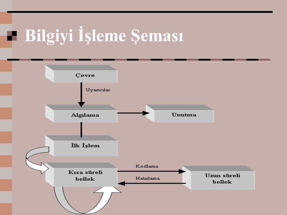 Bilgiyi İşleme Şeması