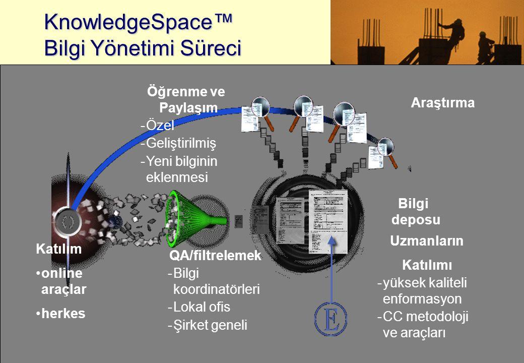 KnowledgeSpace™ Bilgi Yönetimi Süreci