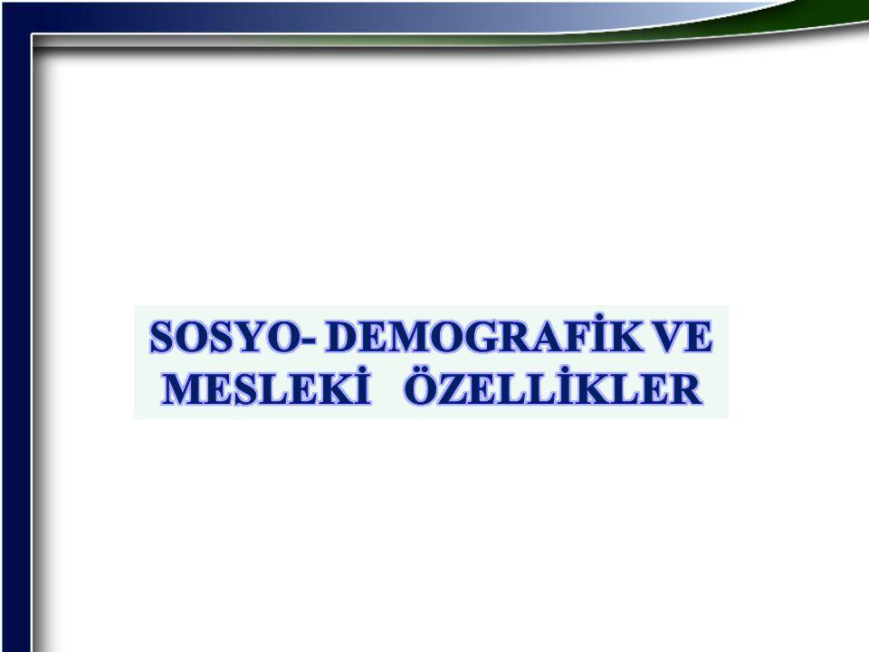 SOSYO- DEMOGRAFİK VE MESLEKİ ÖZELLİKLER