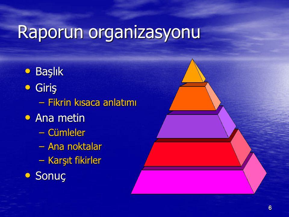 Raporun organizasyonu