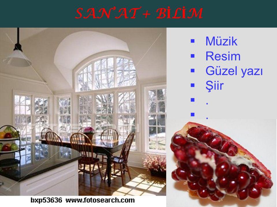 SAN'AT + BİLİM Müzik Resim Güzel yazı Şiir .