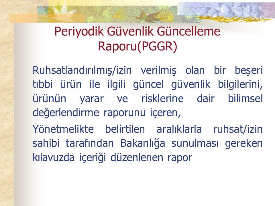 Periyodik Güvenlik Güncelleme Raporu(PGGR)