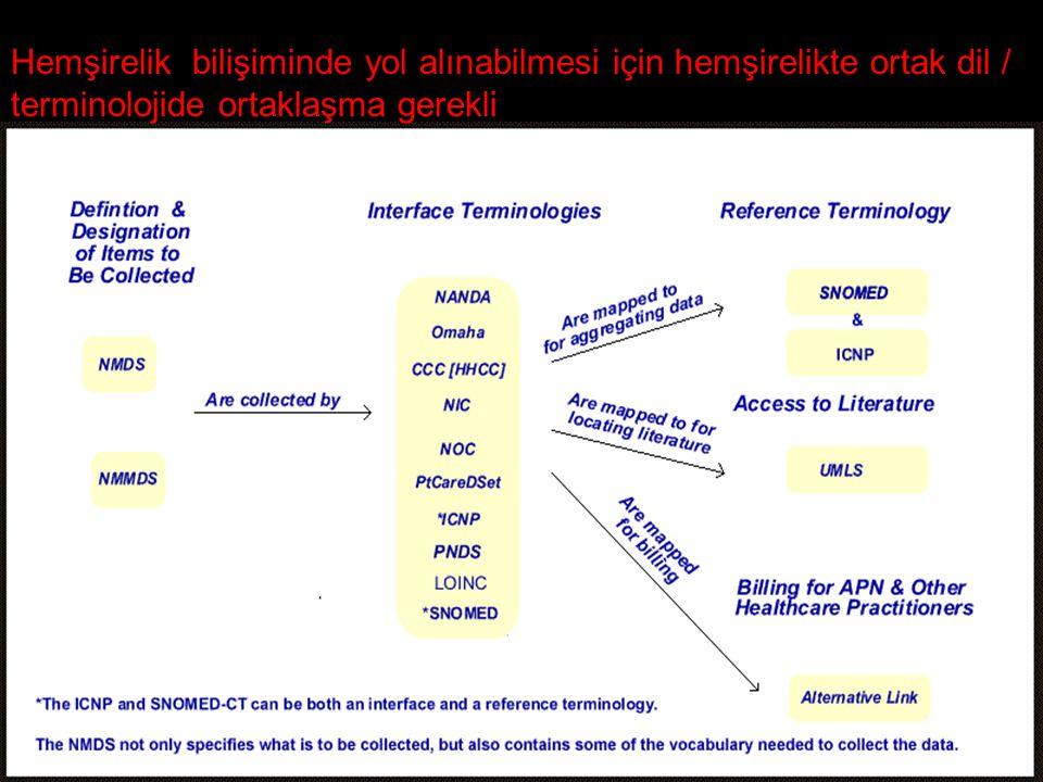 Hemşirelik bilişiminde yol alınabilmesi için hemşirelikte ortak dil / terminolojide ortaklaşma gerekli
