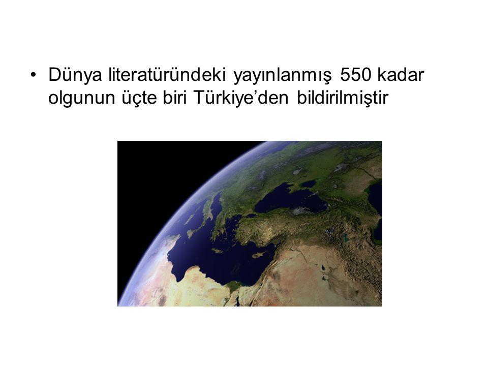 Dünya literatüründeki yayınlanmış 550 kadar olgunun üçte biri Türkiye'den bildirilmiştir