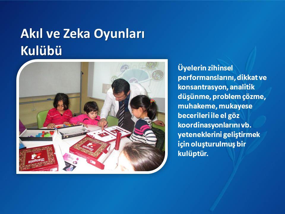Akıl ve Zeka Oyunları Kulübü