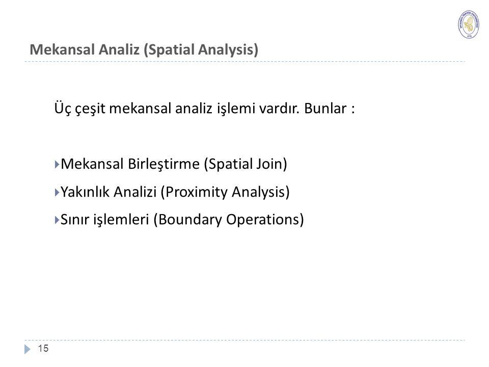 Mekansal Analiz (Spatial Analysis)