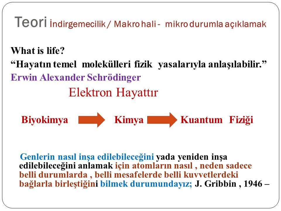 Teori İndirgemecilik / Makro hali - mikro durumla açıklamak