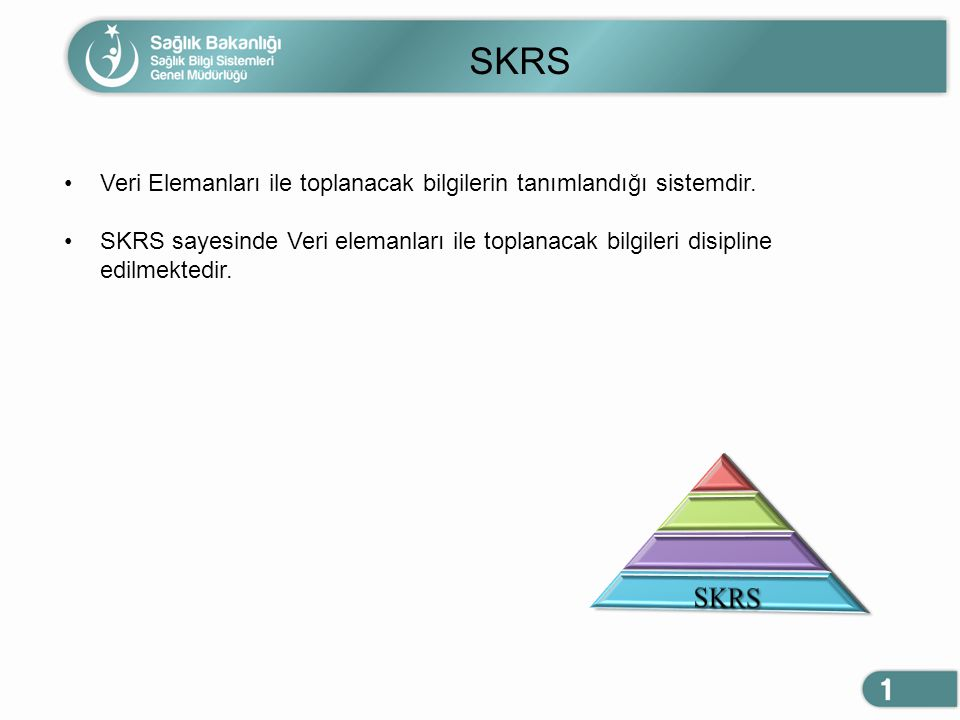 SKRS Veri Elemanları ile toplanacak bilgilerin tanımlandığı sistemdir.