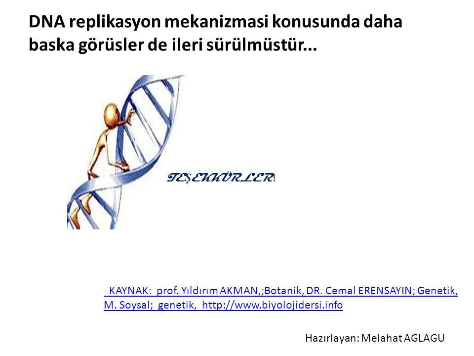 DNA replikasyon mekanizmasi konusunda daha baska görüsler de ileri sürülmüstür...