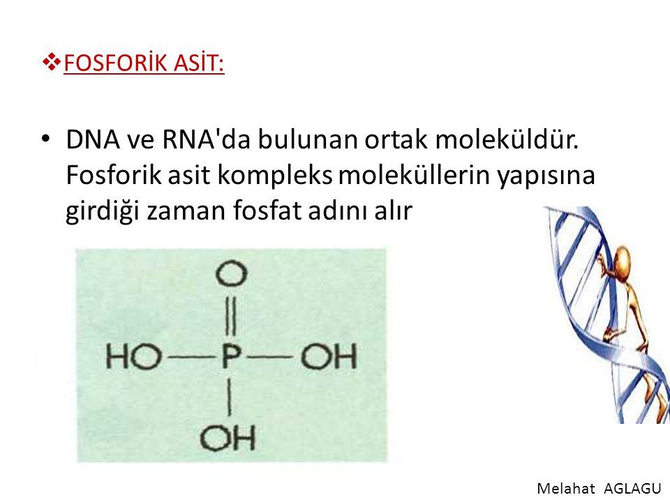 FOSFORİK ASİT: DNA ve RNA da bulunan ortak moleküldür. Fosforik asit kompleks moleküllerin yapısına girdiği zaman fosfat adını alır.