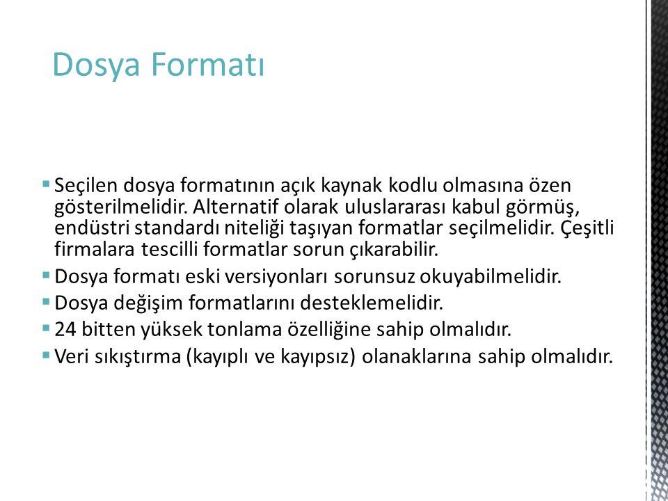 Dosya Formatı