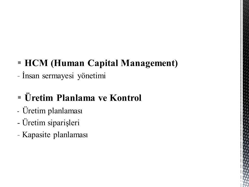 HCM (Human Capital Management)