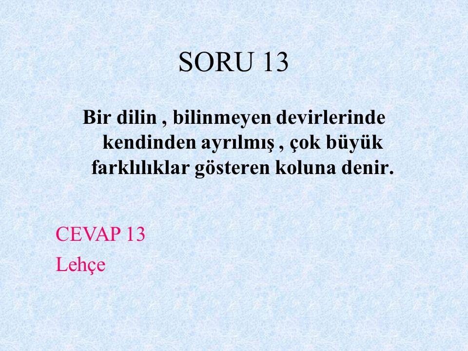 SORU 13 Bir dilin , bilinmeyen devirlerinde kendinden ayrılmış , çok büyük farklılıklar gösteren koluna denir.
