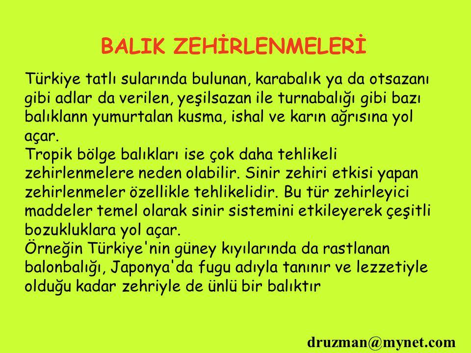 BALIK ZEHİRLENMELERİ