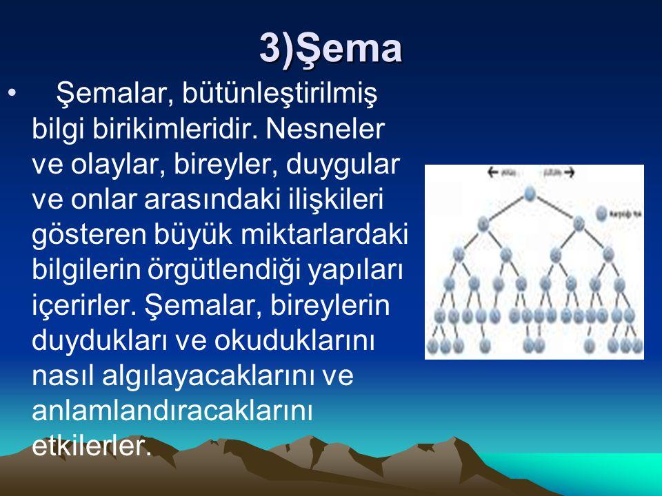 3)Şema