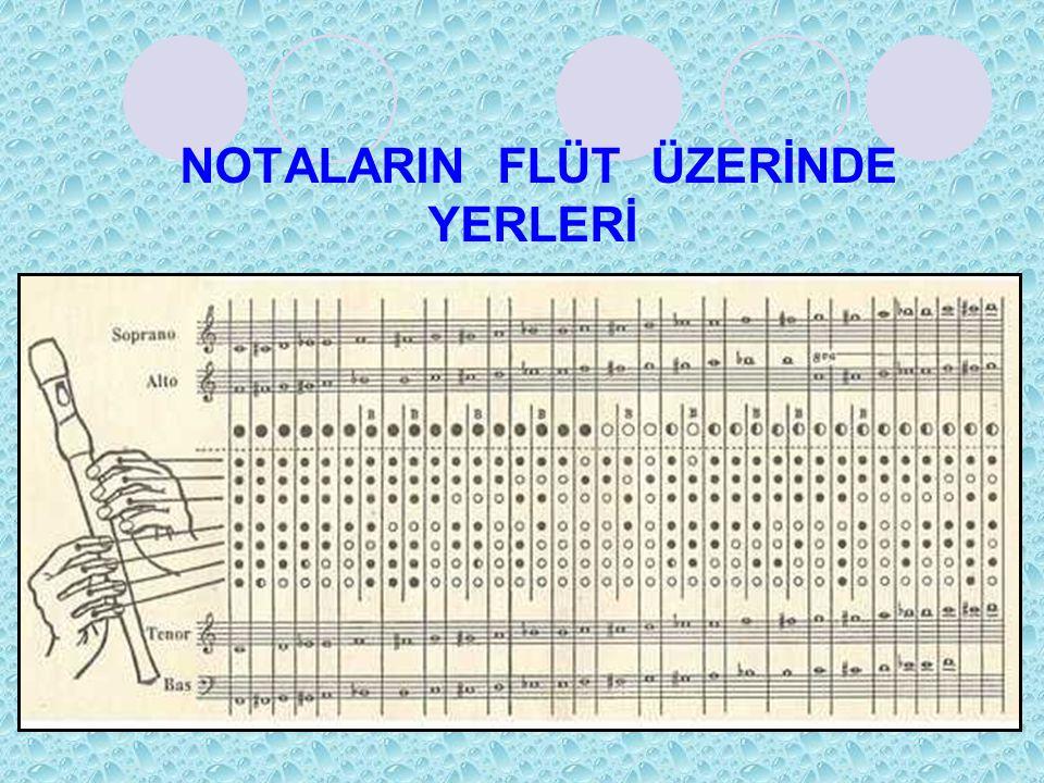 NOTALARIN FLÜT ÜZERİNDE YERLERİ