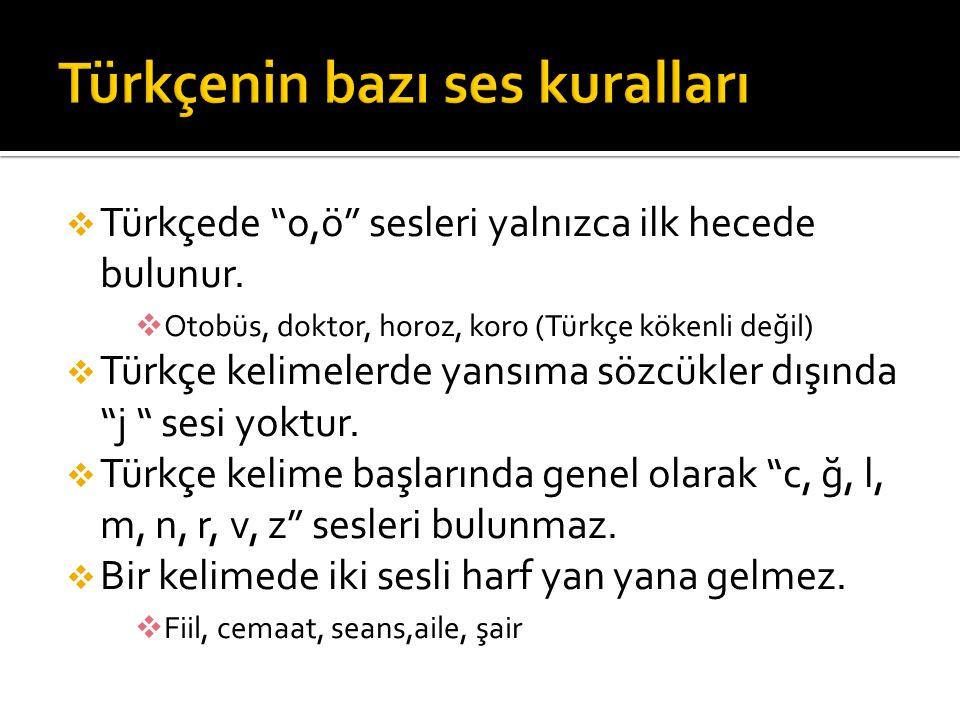 Türkçenin bazı ses kuralları