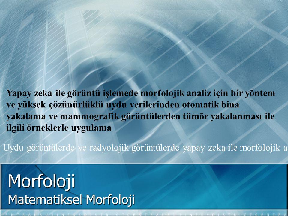 Matematiksel Morfoloji