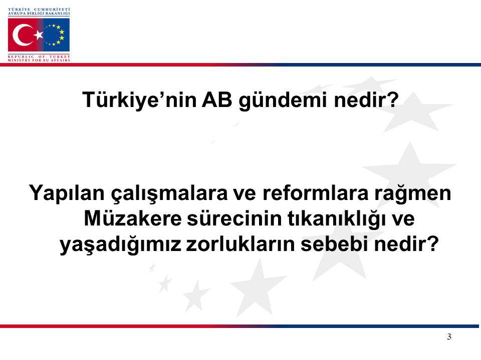 Türkiye'nin AB gündemi nedir