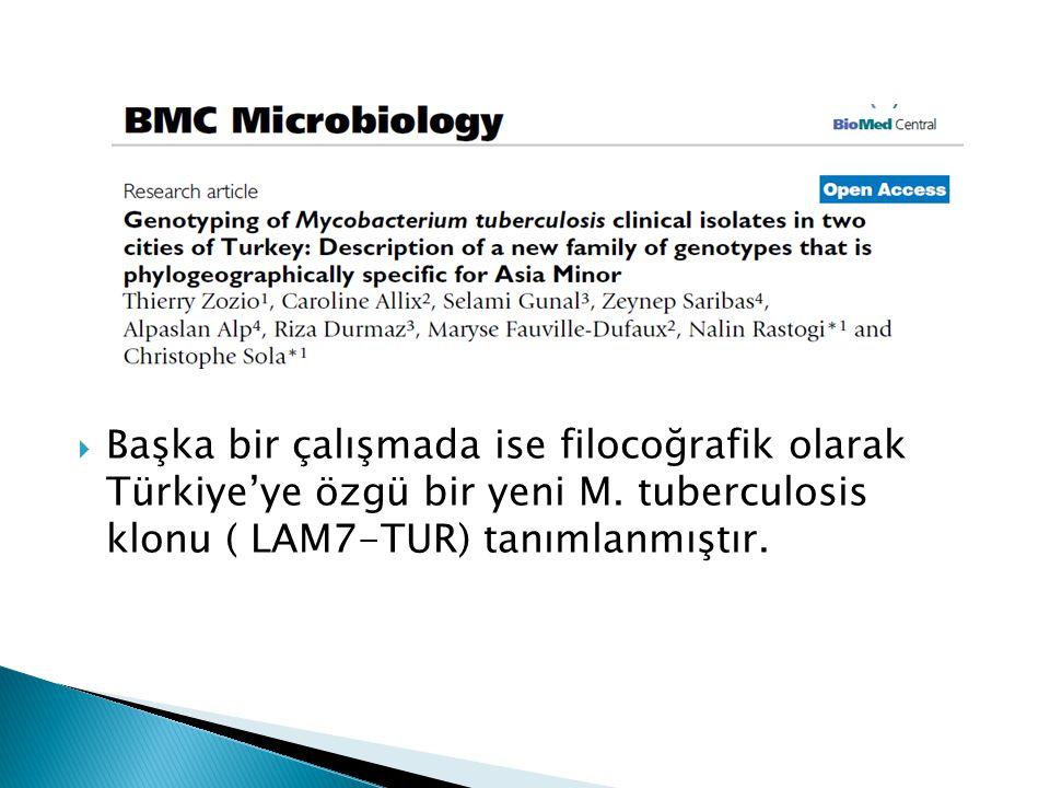 Başka bir çalışmada ise filocoğrafik olarak Türkiye'ye özgü bir yeni M