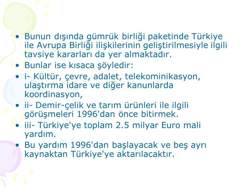 Bunun dışında gümrük birliği paketinde Türkiye ile Avrupa Birliği ilişkilerinin geliştirilmesiyle ilgili tavsiye kararları da yer almaktadır.
