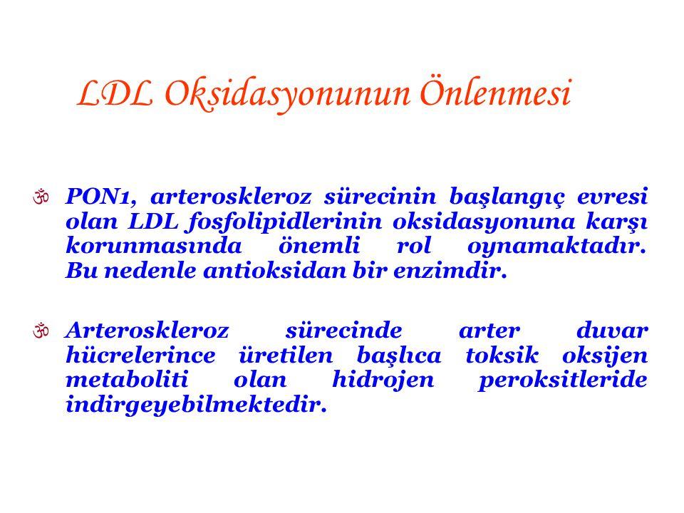 LDL Oksidasyonunun Önlenmesi