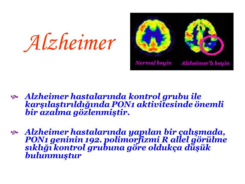 Alzheimer Alzheimer hastalarında kontrol grubu ile karşılaştırıldığında PON1 aktivitesinde önemli bir azalma gözlenmiştir.