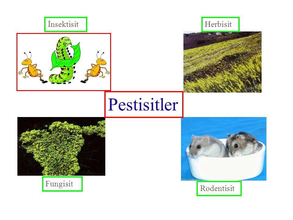 İnsektisit Herbisit Pestisitler Fungisit Rodentisit