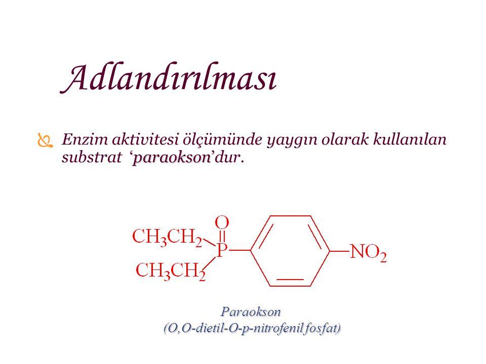 (O,O-dietil-O-p-nitrofenil fosfat)