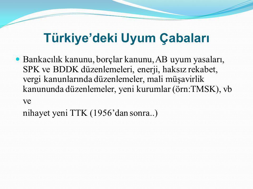 Türkiye'deki Uyum Çabaları