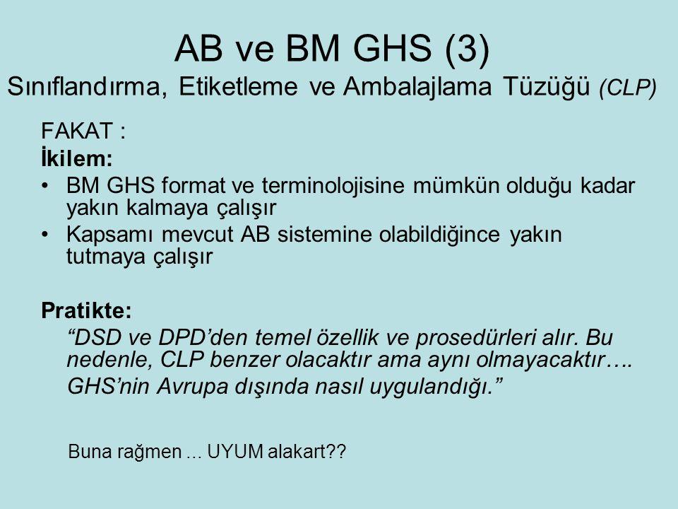 AB ve BM GHS (3) Sınıflandırma, Etiketleme ve Ambalajlama Tüzüğü (CLP)