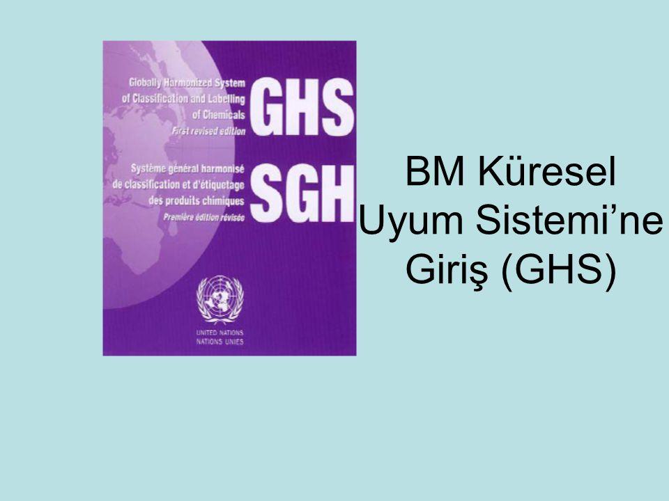 BM Küresel Uyum Sistemi'ne Giriş (GHS)