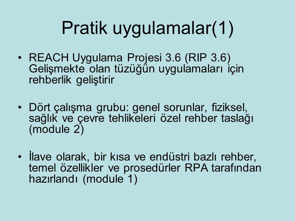 Pratik uygulamalar(1) REACH Uygulama Projesi 3.6 (RIP 3.6) Gelişmekte olan tüzüğün uygulamaları için rehberlik geliştirir.